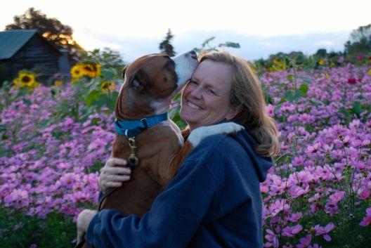 dog behavior hug