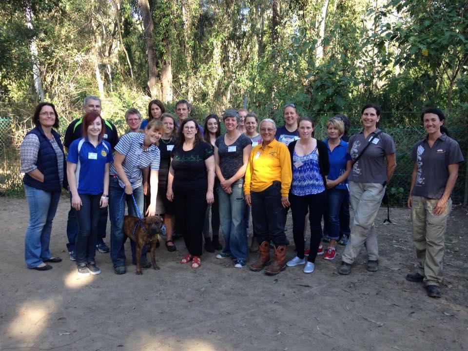 Shelter behavior workshop Gold Coast, Australia